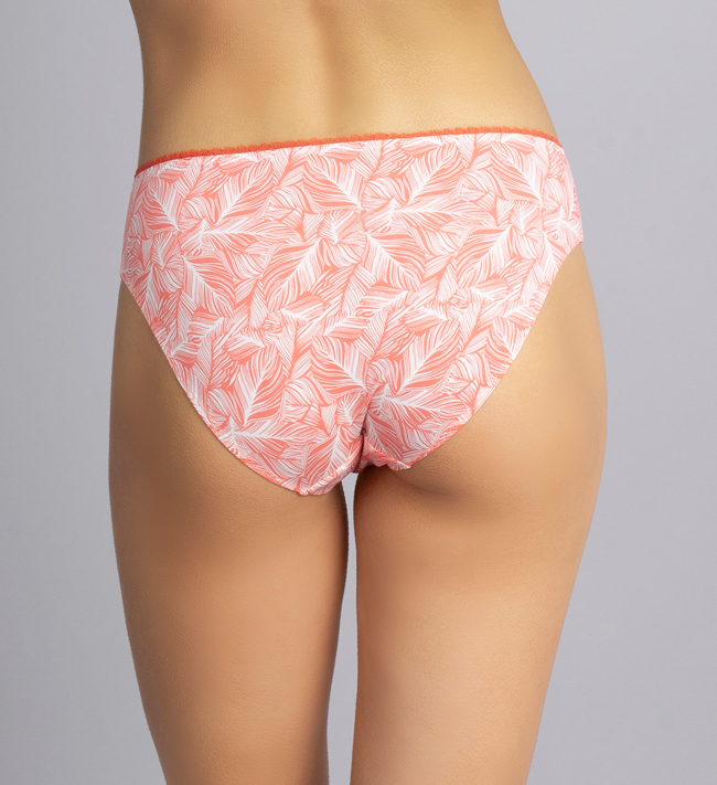 Change Brief Concept Tai other Peach Echo Palm Leaves